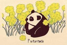 pet - p is for panda