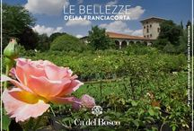 Le bellezze della Franciacorta / Scopriamo assieme le meraviglie presenti nel territorio della Franciacorta  #enjoycadelbosco