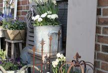 Primavera im Garten
