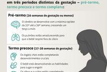 juliana paraizo-gravides