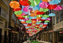 Envolée de parapluie