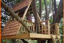 Tree house to 3 tree