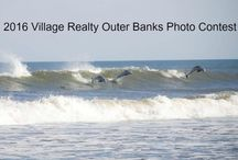 2016 Outer Banks Photo Contest / The Annual OBX Photo Contest. Anyone can enter, photos from any year are OK as long as they were taken here. Lots of categories to enter. Nice prizes!  Sponsored by Village Realty OBX