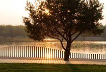 Fancy fences
