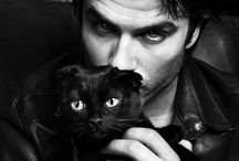 Ian Somerhalder / as Damon Salvatore in Vampire Diaries
