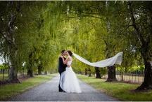 Wedding Photography Blenheim