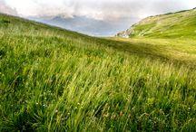 Irpinia landscape / Irpinia's treasures.