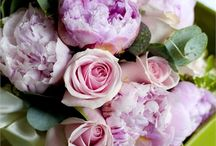 Flowers / Flowers for inspiration. Bouquets and floristry patterns.