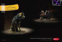 انجمن های حمایت از حیوانات