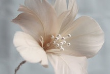 Kukkia, sulkia ja muita unelmia