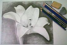 Çizimlerim