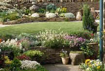 záhrada-