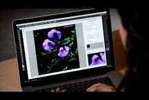 Photoshop & Lightroom Vids / Tutorials, Cool projects and more!