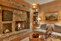 Fireplaces - Stay Cozy, My Friends / The perfect way to survive the colder months.