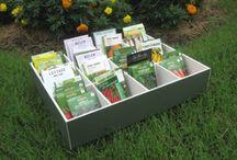 Vegetable gardening / by Jeanne Scottie mom