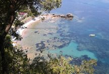 la Francesca Sud- Scario- Salerno / La magia di un bosco sospeso tra cielo e mare, nel cuore della natura.