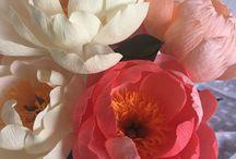 grandes fleurs du papier crépon