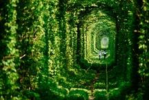 Wanderlust / Beautiful places.