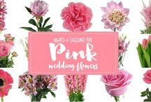 Flower Dictionary: Flower Names Pictures and Seasons / The ultimate flower name and picture resource filled with wedding flower names, wedding flower seasons, wedding flower pictures and wedding flowers by color!