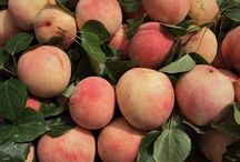 •Peach•