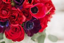 Red Flower Arrangements & Bouquets / Red flower arrangements, bouquets, centerpieces, event decor, corsages boutonnieres / by Fly Me To The Moon Florists