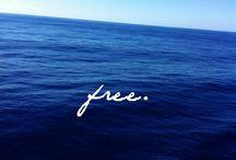 Freeeeeeeeee