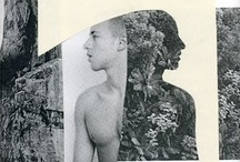 Collages / by E C