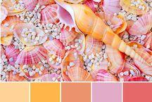 color schemes inspiratie