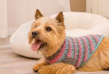YORKIE CROCHET CLOTHES