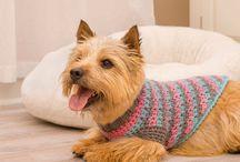 Crochet perros