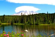 Hikes in Mount Rainier / Hike in the shadow of Washington's highest peak / by Backpacker Magazine