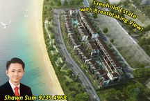 Freehold Landed Properties For Sale / This board is about all the Freehold Landed Listings which i am currently marketing. In the market to invest in a Freehold Landed Property? Look no further, call me at 92394968 to discuss & i will shortlist a few for you.