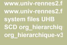 Organigrammes BU
