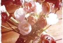 Vielen Dank für die Blumen / by Melanie Grundmann