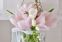 Giardino in fiore...