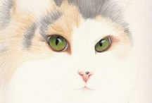 Cat Drawings and Paintings