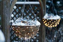 Winterzauber im Garten / Inspirationen für winterliche Bilder aus Gärten