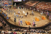 Guest Photos / See what adventures our guests had at Dixie Stampede, and share your own with us using the hashtag #DixieStampede !