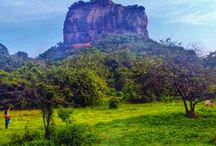 Sri Lanka / Sri Lanka: travel, lifestyle, food, culture - how to live life to the fullest in Sri Lanka.  / by Skimbacolifestyle.com