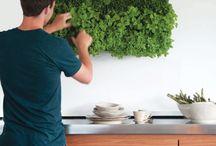 La cocina ideal / Aquí te damos los ingredientes para preparar la cocina ideal.