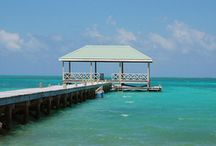 Vacation Destinations / by Tami Smith