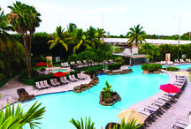 Dream Trip to Embassy Suites around the world