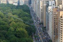 I LOVE NYC !!! / FAMS