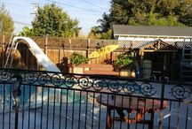 our yard and pool