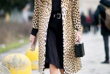 Leopard boom