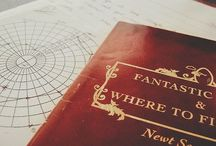 Fantastic Beasts and Were to Find Them || lit / 《My philosophy is that worrying means ou suffer twice.》-Newt Scamander
