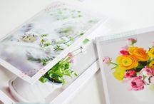 DIY Paper / by Odette Scherman