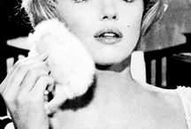 Miss Marilyn Monroe / Because there are too many pictures of the brainy, wise and talented Marilyn.