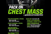 Chest Workout's