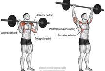 day 2 shoulder exercise